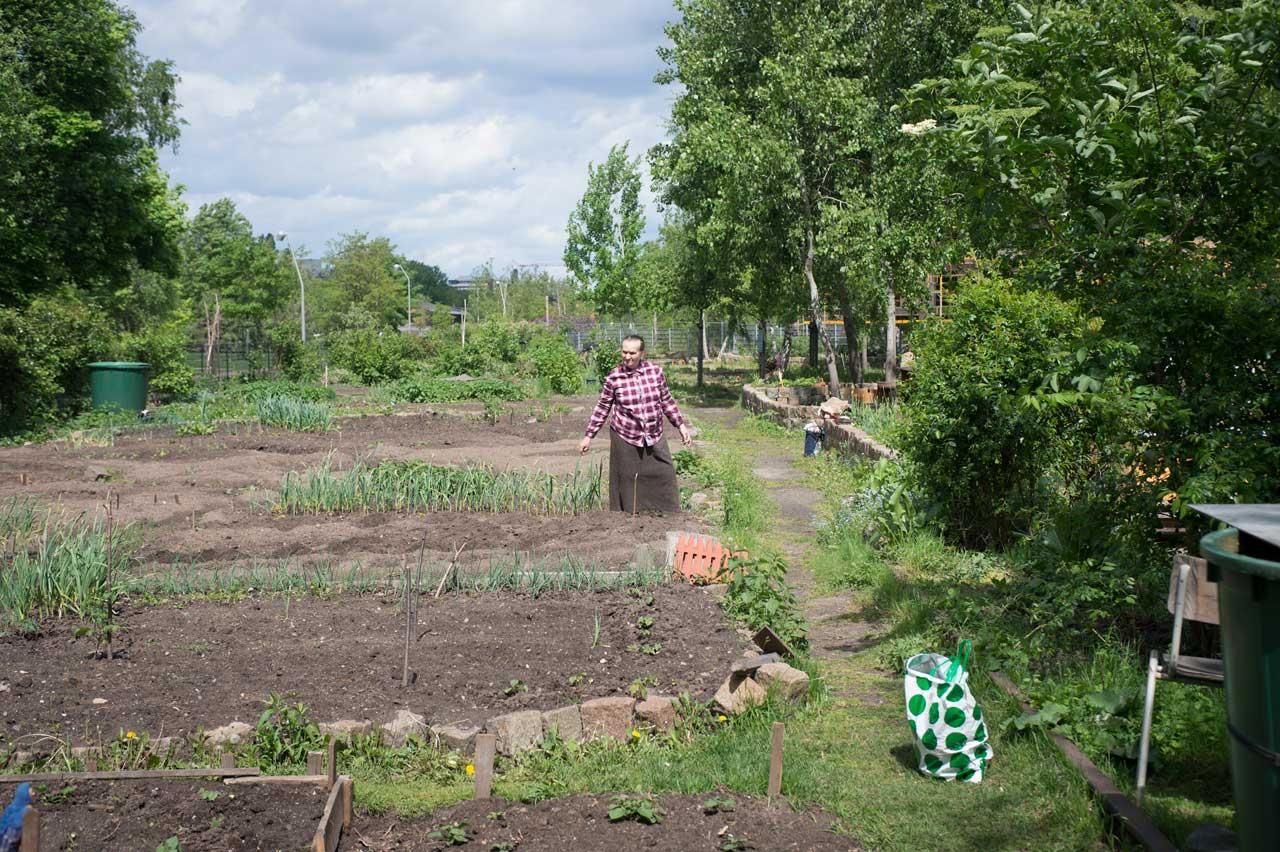 Aus der Serie »Rosenduft – der Garten ist unsere Heimat«. Foto: Brigitte Möhrle